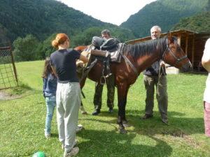 Nejlepší dopravní prostředek, kůň. Shatili, Gruzie