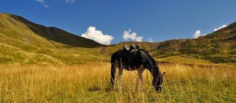 Gruzií na koni aneb nejkrásnější pohled na krajinu je z koňského sedla